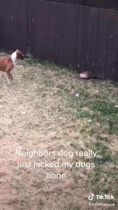 He do be stealing