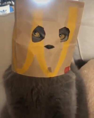 Nobody cared who I was, until I put on the mask
