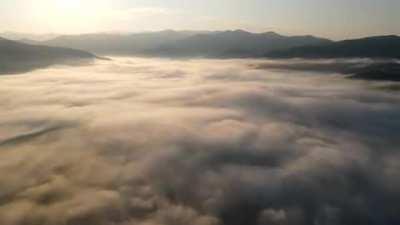 Rolling Fog Sunrise timelapse I shot with drone