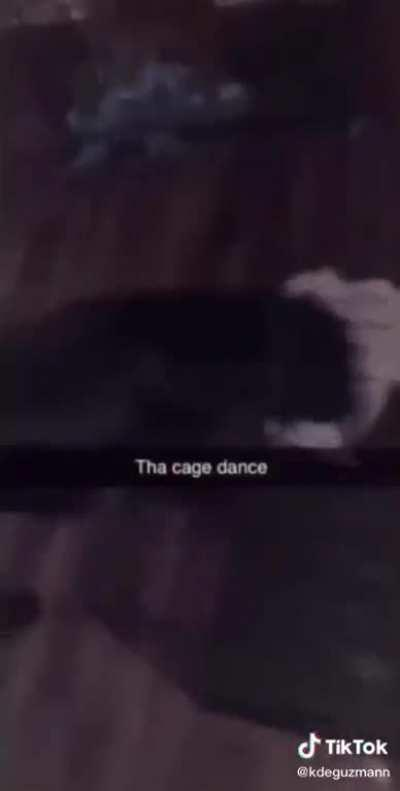 the cage dance