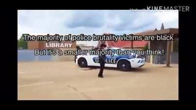 Top 5 EPiC police facts