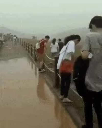 should have just walked around the puddle