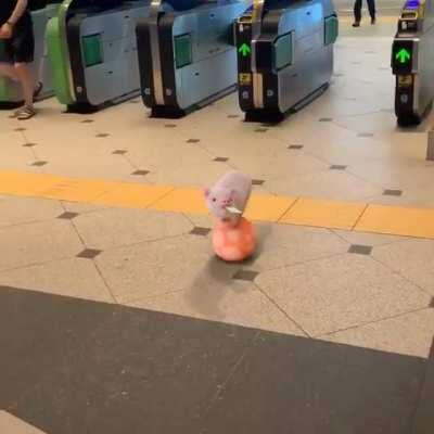 Pinky at the train station