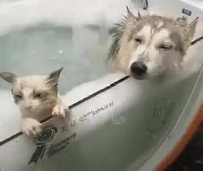 Taking a bath is relaxing