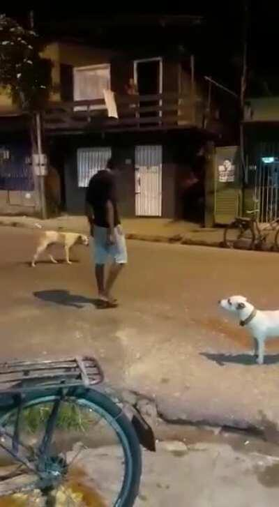 Dude fighting Dogs Naruto Style
