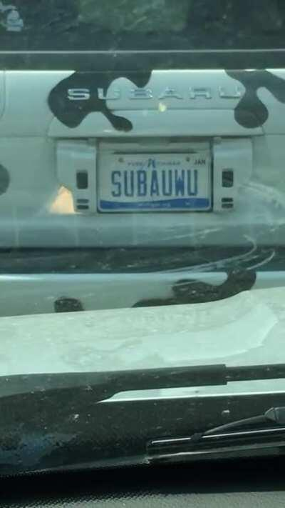 I actually found a Subauwu in the wild!