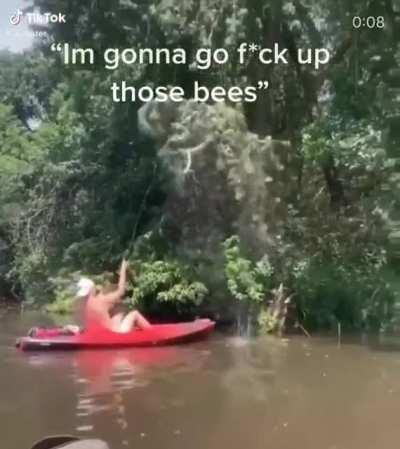 I'm gonna go F*ck up those bees