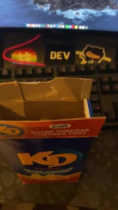 There is a big noodle in my Mac and Cheese box