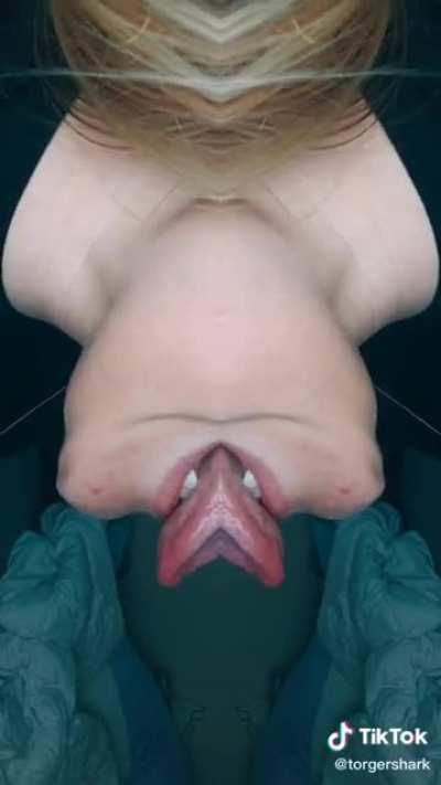 WAP: Xenomorph cover