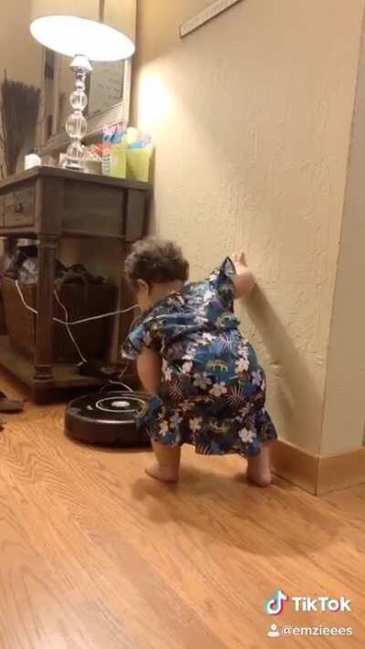 Roomba fight