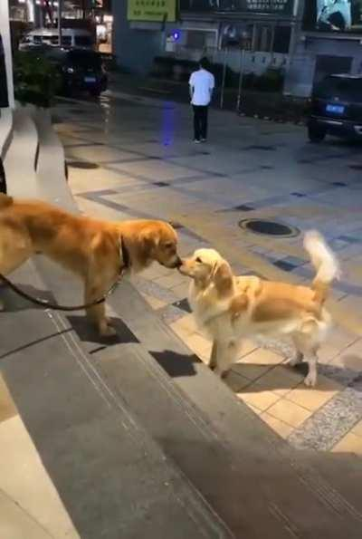 When good meets also good.