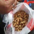 CISF recovers about R 45 lakh foreign currency hidden in peanuts, biscuits being smuggled by a passenger at Delhi Airport