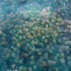 Incredible drone footage of a sticky note migration