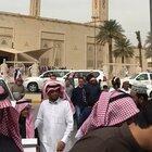 Fresh locusts for sale in Saudi Arabia
