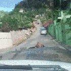 Guy chilling at a random pothole.