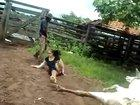 WCGW if I touch a cow giving birth