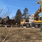 Assembling Trees