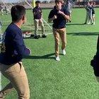 Fight at my school