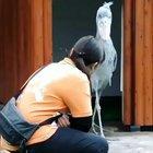 Shoebills are scary af