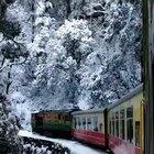 Toy train passing through a forest after snowfall in India.