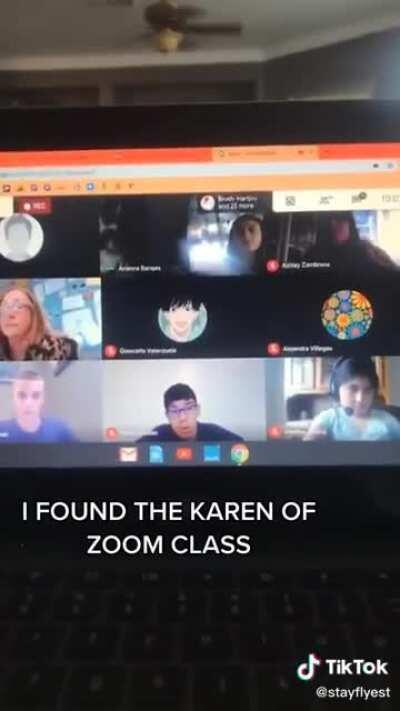 Karen infiltrates zoom meeting