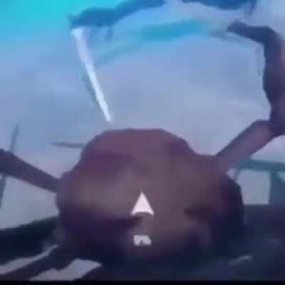 Crab battle Royale