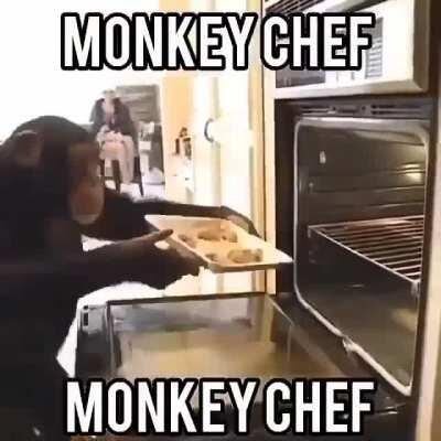 Cooking monky