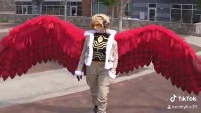 Video of my Hawks wings in action!