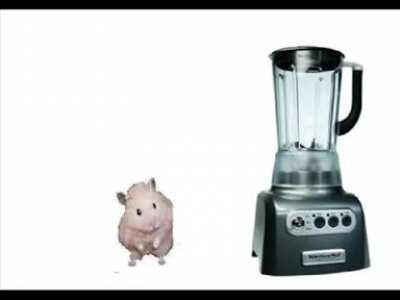 Hamster in a Blender WARNING NOT FOR FAINT HEARTED