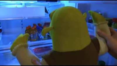 Don't Eat Shreks Cheesecake!