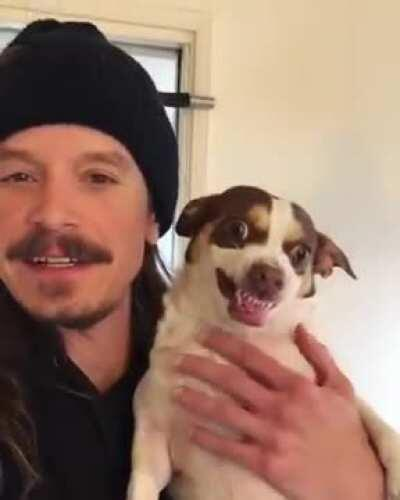 I suppose one, under certain circumstances, could consider what this dog did as a scream, and in being so, is eligible for this subreddit. And with the addition of the perfectly timed cut coinciding with the scream, is all the more eligible still.