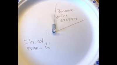 paper plate man