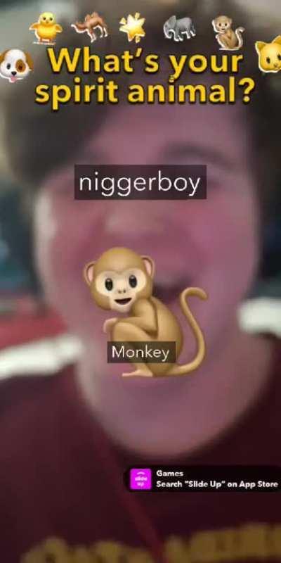 Niggerboy