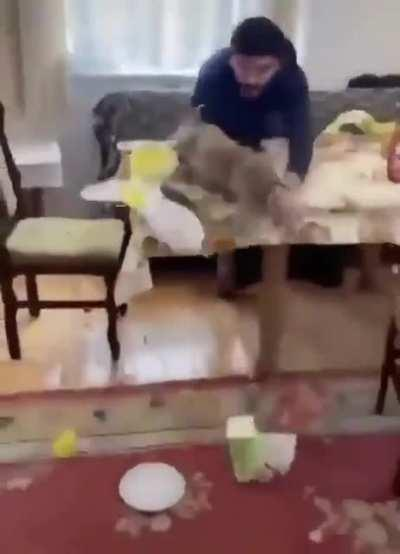Bringing a pig to the table