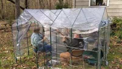 This grandpa and his buddies always played music at an Irish pub, but since the pandemic, they've been playing in the backyard - six feet apart. With the weather getting cold, they needed a better solution — so his daughter bought tiny greenhouses. Now, t