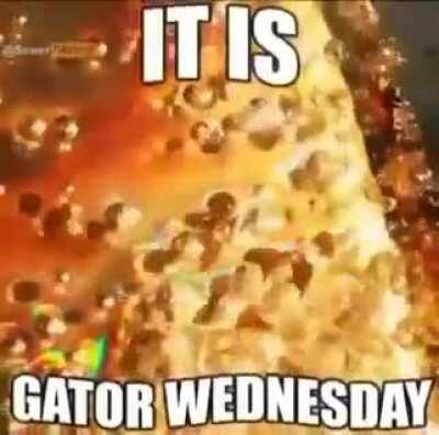 Gator Wednesday