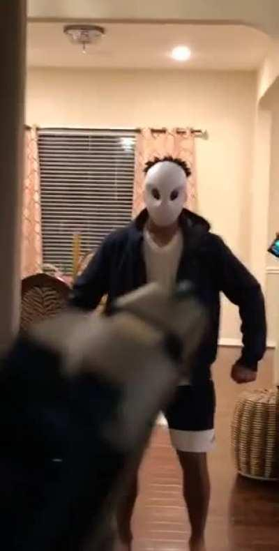 When the purge happens on your birthday