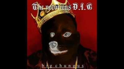 Le notorious D.I.C. has arrived