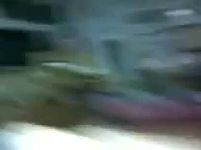 Pterodactyl screech