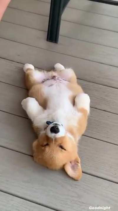 Why'd he fall asleep like that 😩😂