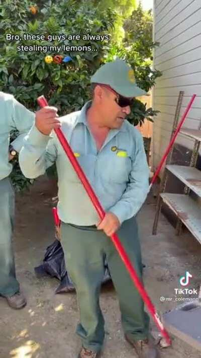 Guy gets mad at landscapers for taking a few fallen lemons off the floor .