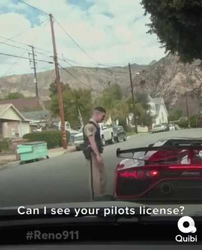 Can I see you pilots license