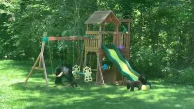 Who doesn't love playing on the playground?