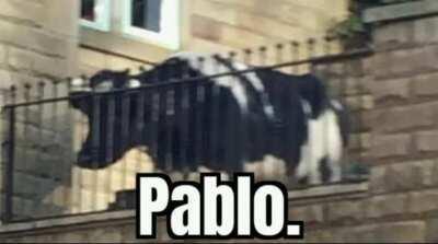 Pablo.