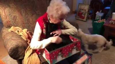 Grandma's new best friend.