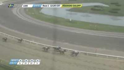 Swedish horse racing mayhem