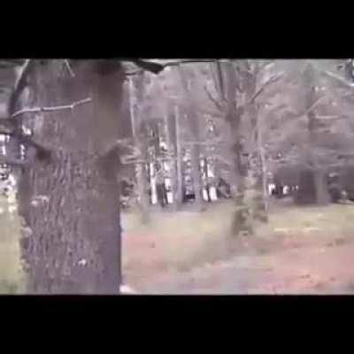 Dum-dum with a gun in the wild