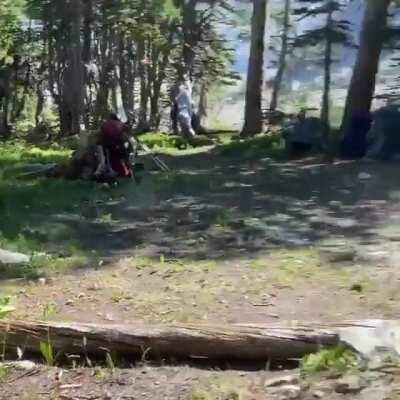 Had two bull moose sprint through our campsite this weekend in Indian Peaks Wilderness. They were chasing a cow and her calf (barely visible at the beginning of the video) and ran less than 10 feet past me! Terrifying!