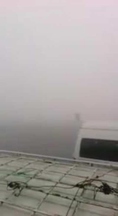 There is a heavy fog in Egypt and cars are crashing