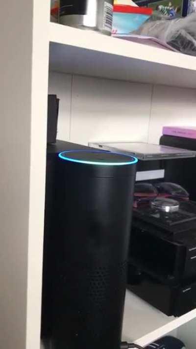 Never ask Alexa to play 505